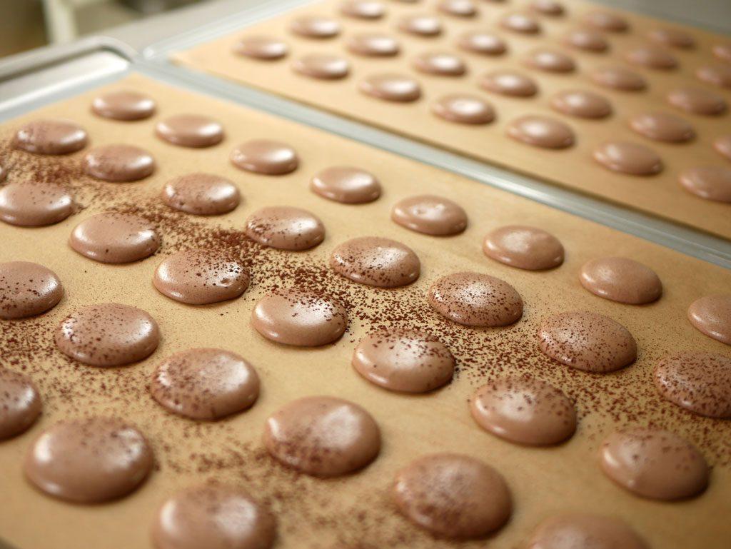 Cocoa macaron shells